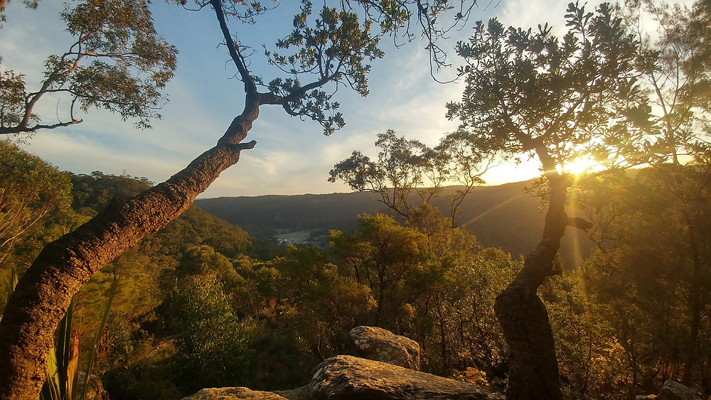 best places to live in the central coast