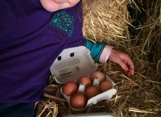 Boiling fresh eggs!