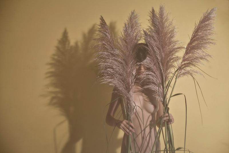 inflorescencias+ao+ventoweb.jpg