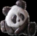 panda sculpté bois noyer fait main
