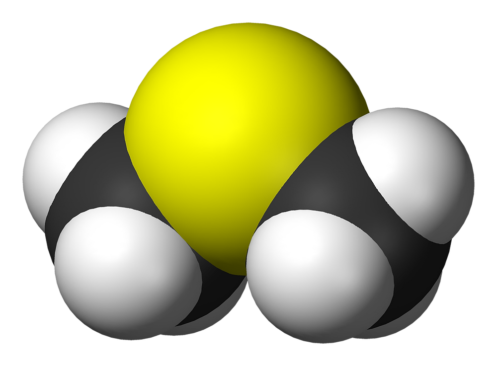 디메틸설파이드, dimethyl sulfide, c2h6s, 양배추, 옥수수, 비트루트, 이산화황, 디메틸설폭사이드, 메틸설포닐메테인, 메테인설폰산, 황산, mfc