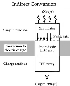 digital radiography, dr, cr, x-ray,