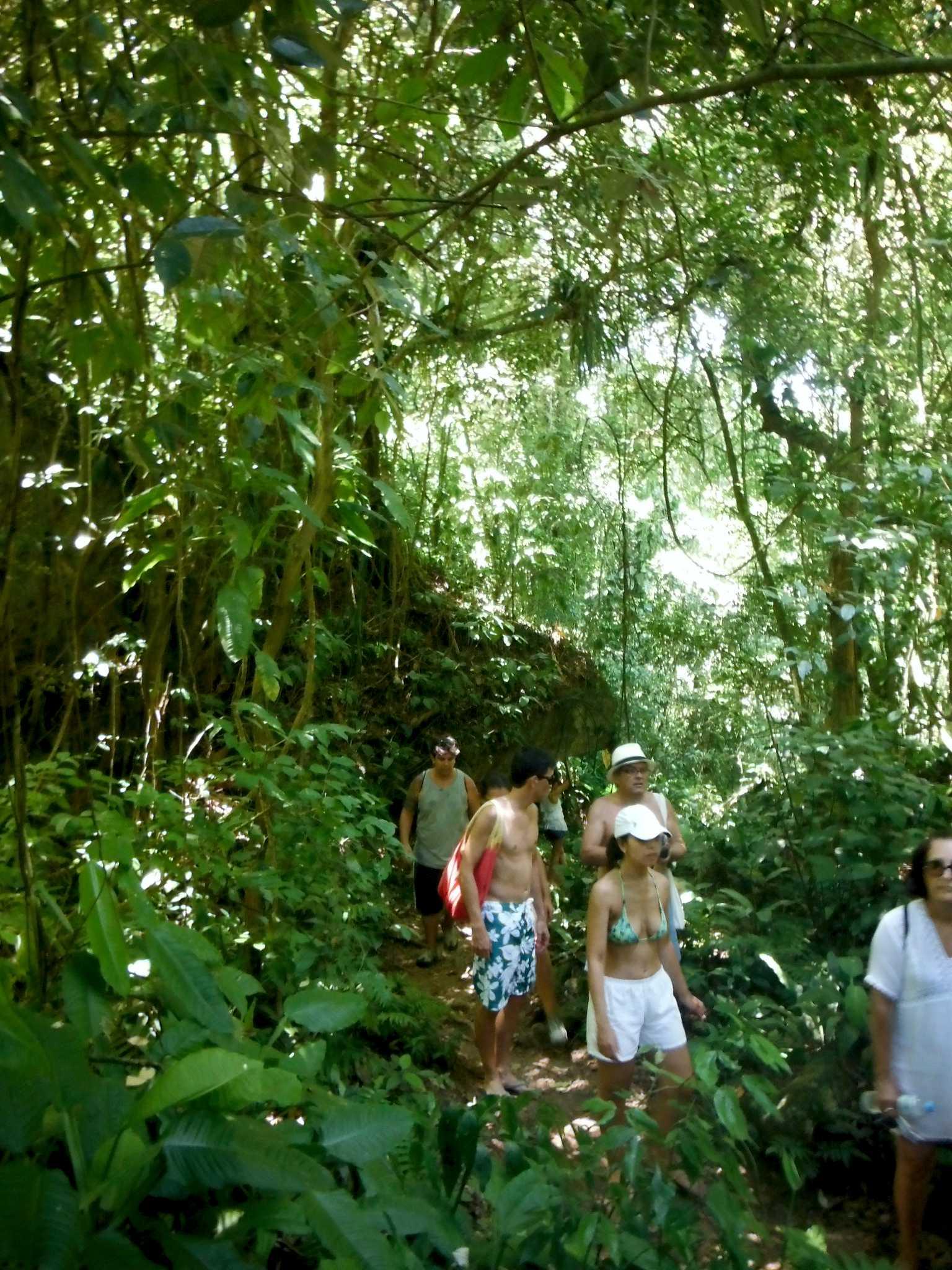 trilhas em ilhabela.jpg
