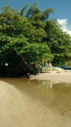 Passeio em Ilhabela rio (2).jpg
