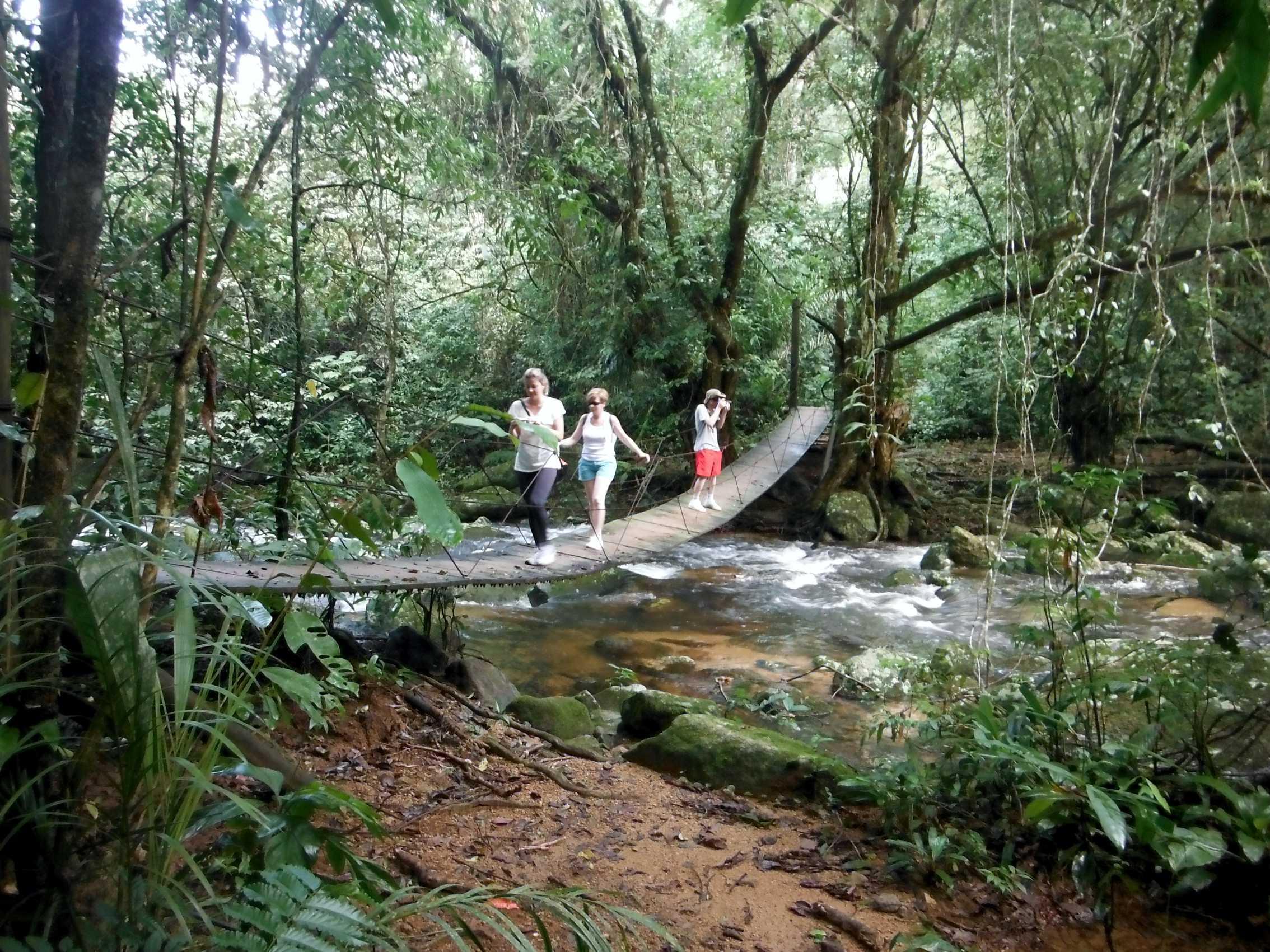 turismo em ilhabela ponte da cachoeira.jpg