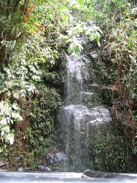 Passeios em Ilhabela chuveirinho.jpeg