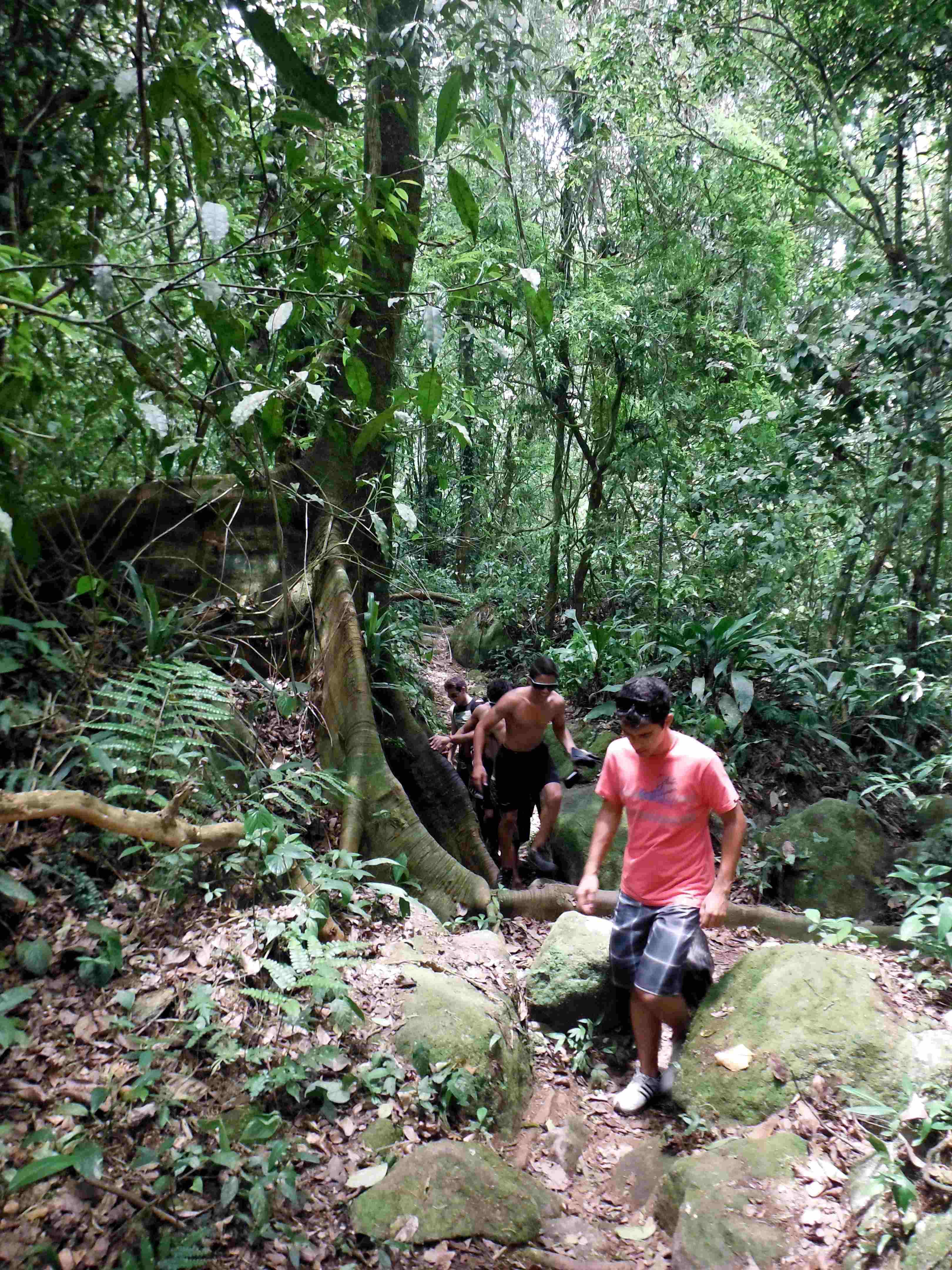 trilhas em ilhabela