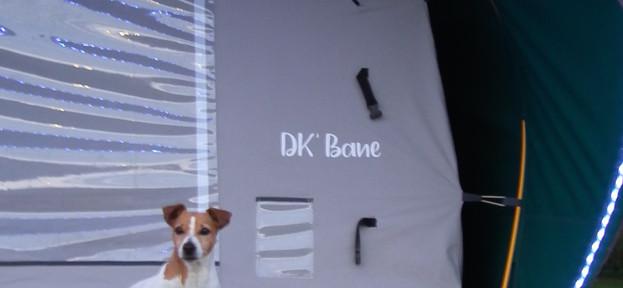 DK BANE MINI: Adoptée par tous !