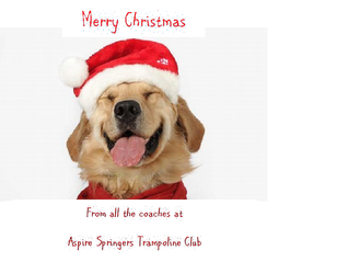 Merry Christmas to all Aspire Springers