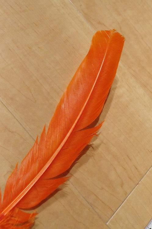 羽根 オレンジ(30cm)48本セット