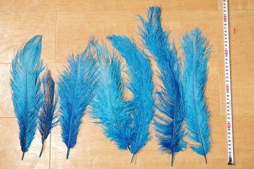 羽根 水色オーストリッチ(30〜45cm)100本入り