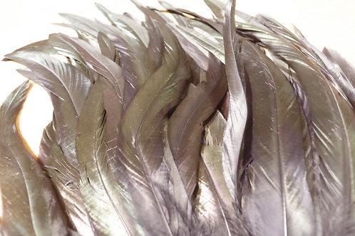 羽根 黒マラボー