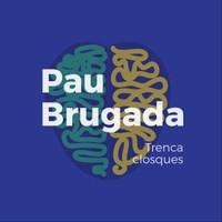 Pau Brugada - Trencaclosques