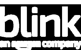 blink an amazon company