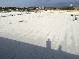 roof replacement on government building