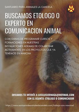 SANTUARIO PARA ANIMALES LA CANDELA.jpg