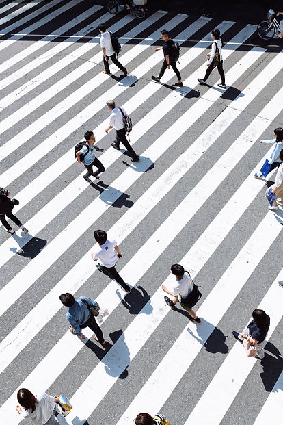ryoji-iwata-CLZ5DzbbhG0-unsplash.jpg