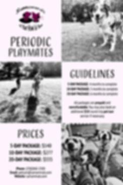 PERIODICPLAYMATES-01.jpg