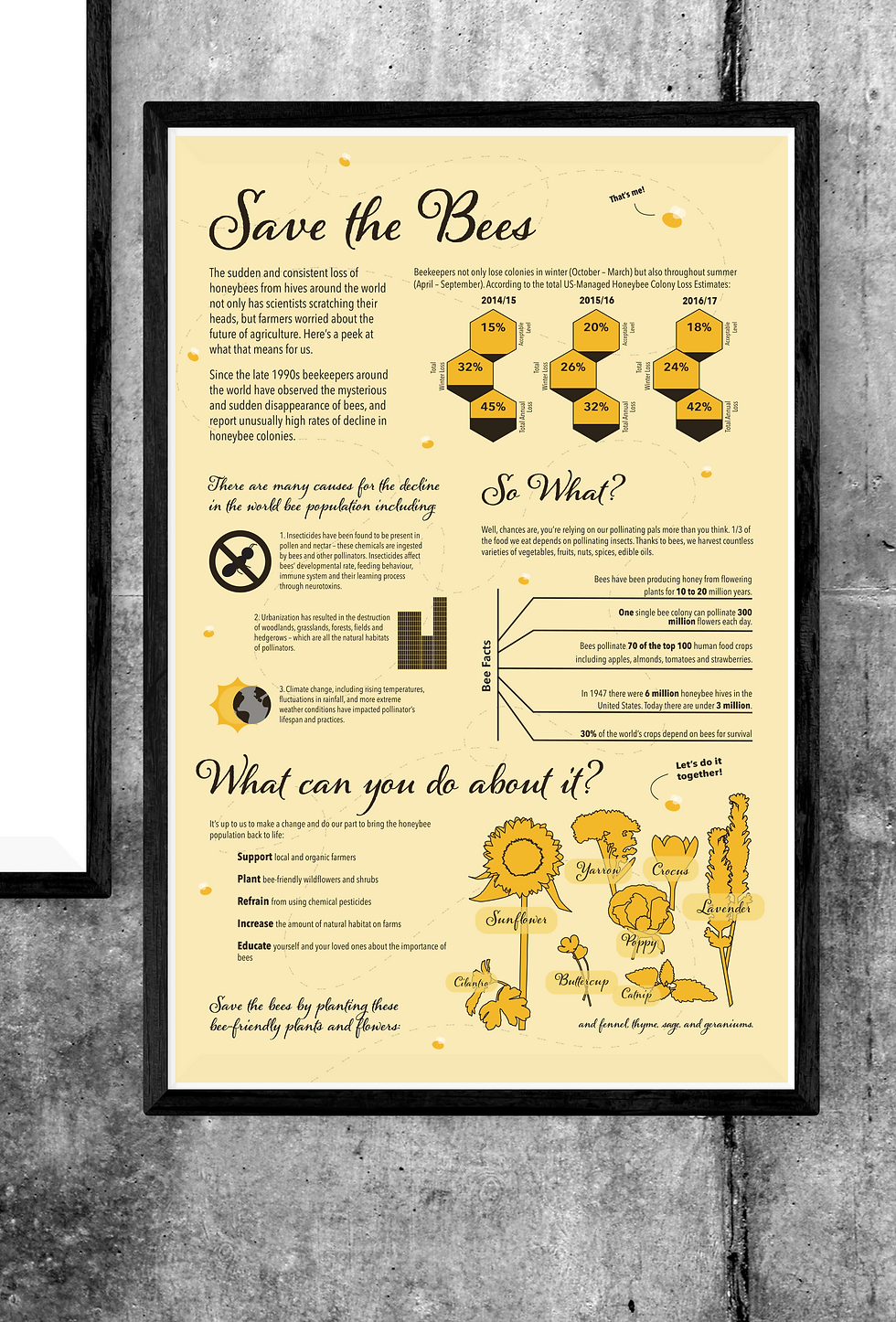 BeeInfographicMockUp01.png