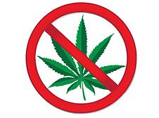 dangers marijuana.png