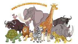 yellow zebra safaris