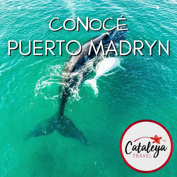 Puerto Madryn.jpeg