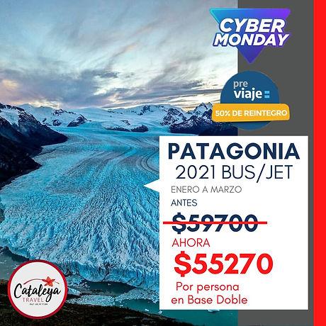 Patagonia Cyber Monday.jpeg
