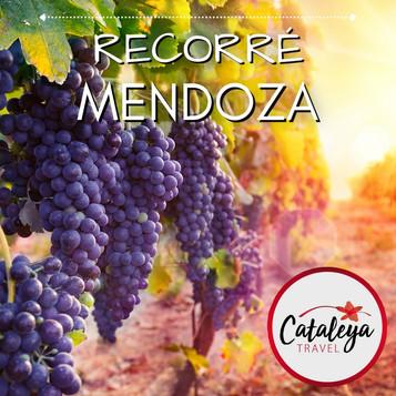 Mendoza.jpeg