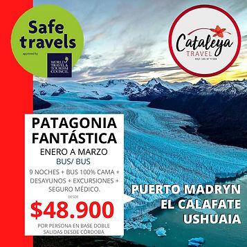 Patagonia Bus- Bus.jpeg