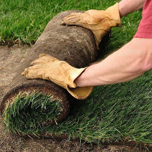 Zakladanie trávnikov
