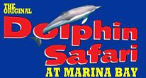 dolphin safari.png