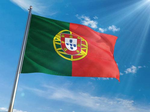 Portuguese Conversation