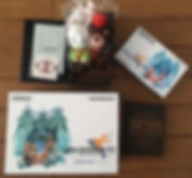 Nintendo GameBoy Advance Final Fantasy Tactics Advance deluxe Pack limited