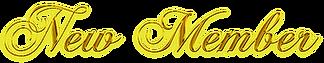 新メンバー|MIYABI Promotion