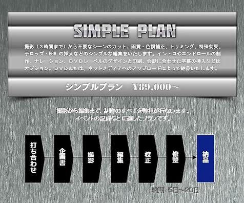 simpleplan.jpg