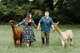 25_Bluebird-Alpaca-Farm-NJ-Engagement.jp