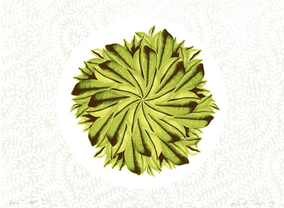 green008.jpg