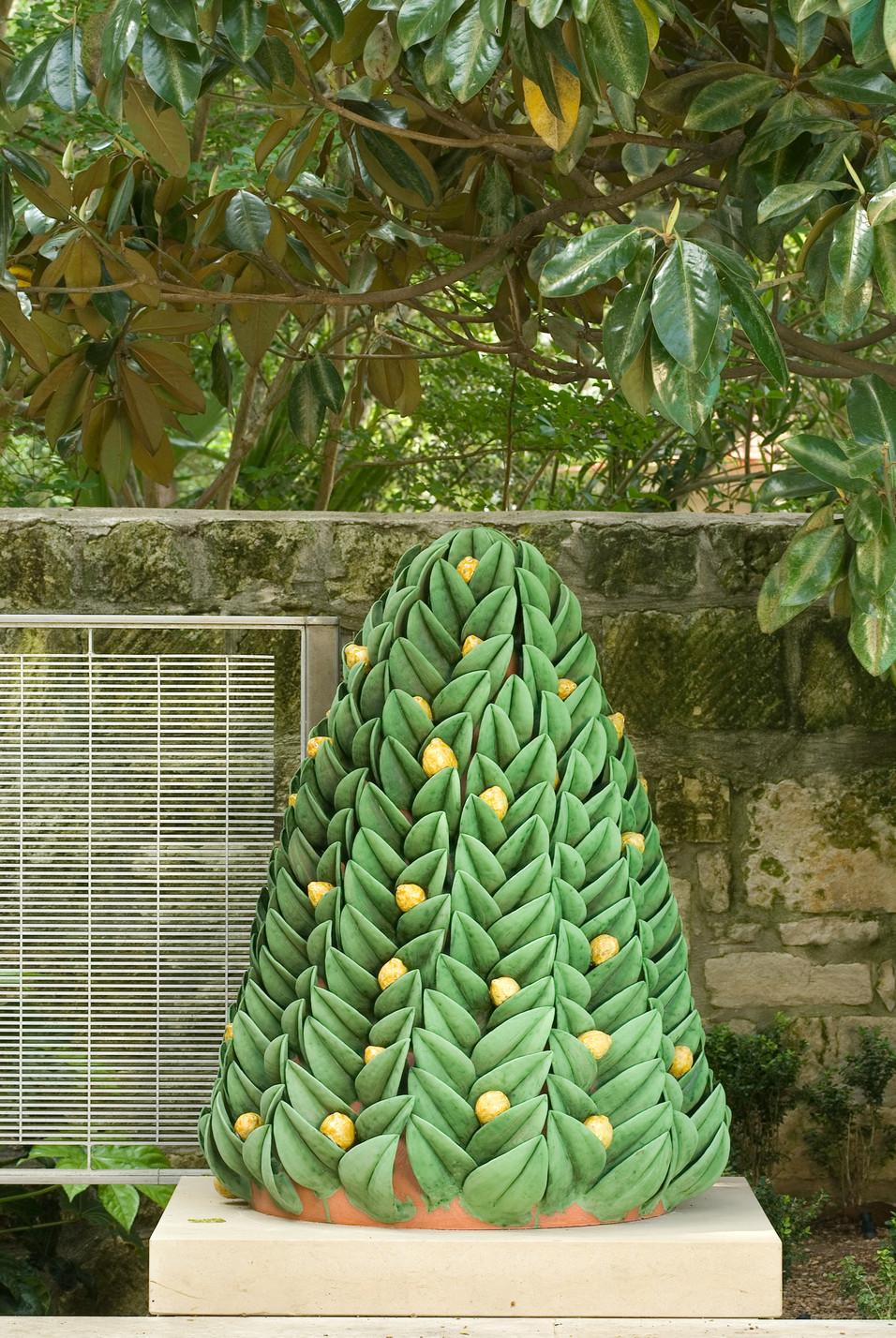 Lemon_Tree_71_300dpi.jpg
