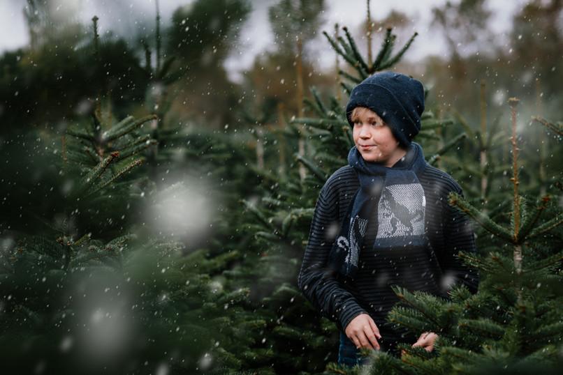 Kerstsessies tussen de kerstbomen 4O9A47