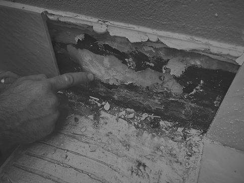Conspar building inspections and investigations diagnose and solve long-term building issues