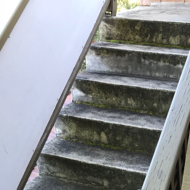 Water penetration of concrete surfaces can lead to concrete cancer (residential strata complex, West Perth)