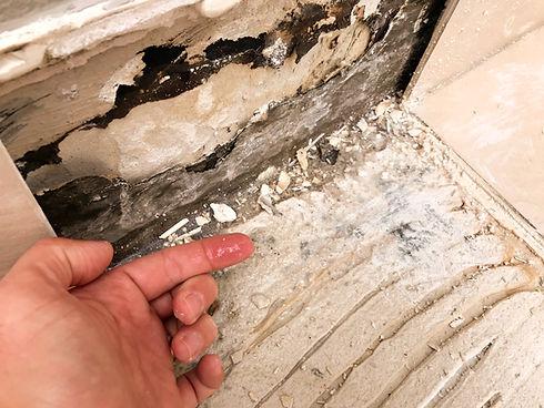 destructive inspection damp source faile