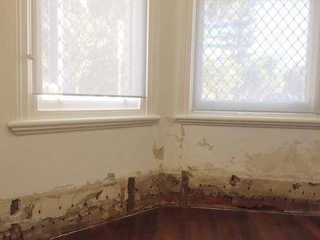 Highgate heritage property gets rising damp treatment