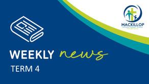 NEWSLETTER | Term 4, Week 2