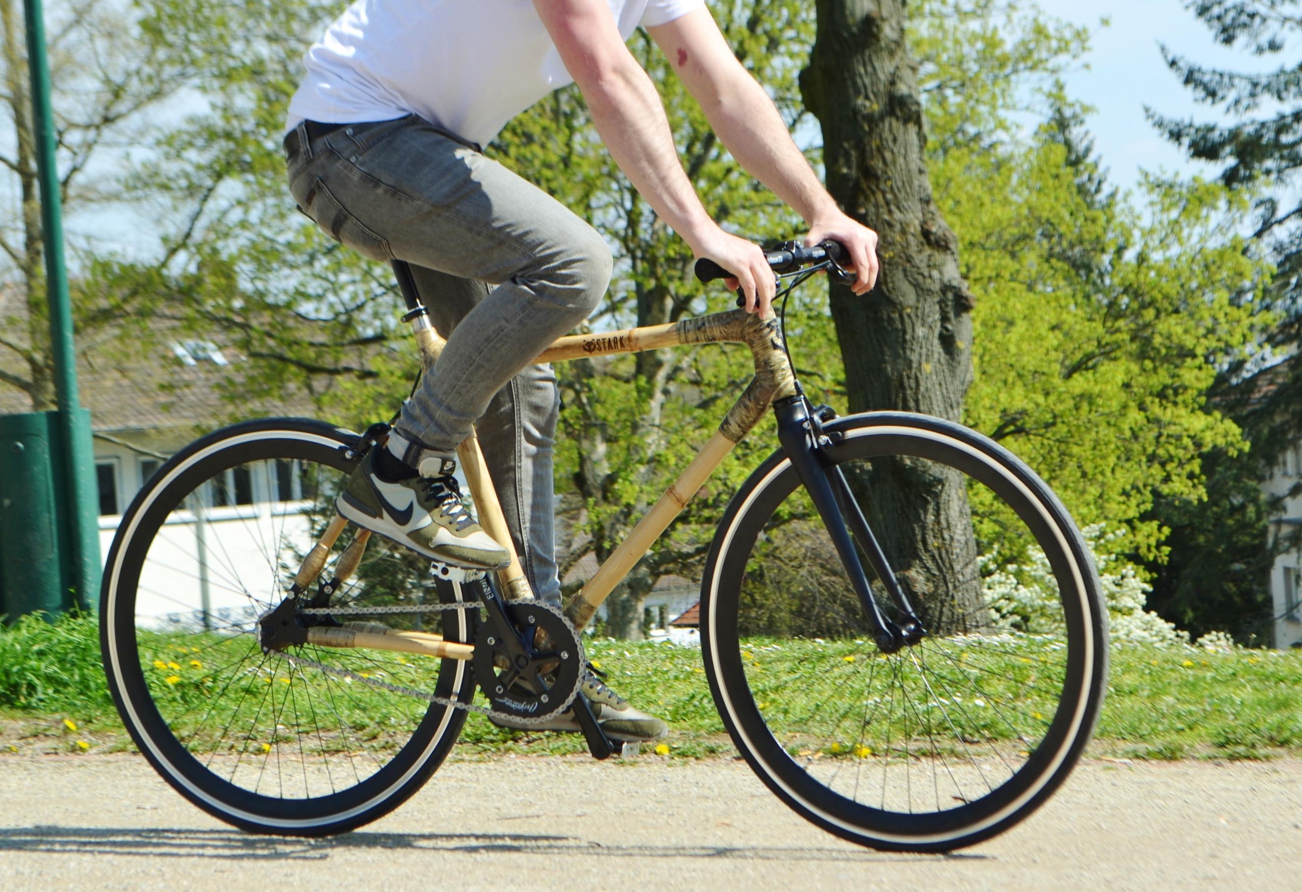 STARK Bamboo City Rad