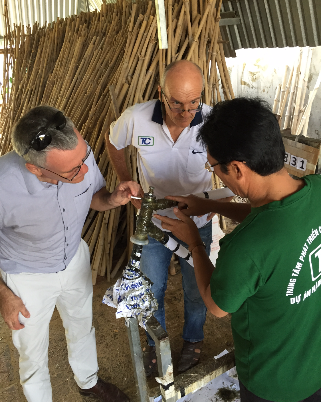 Bambusrahmenkonstruktion