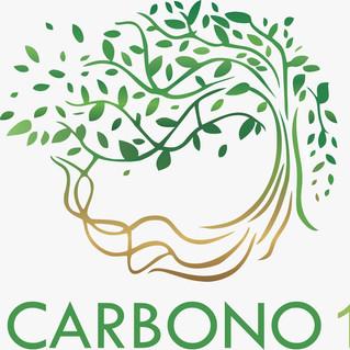 Carbono 14