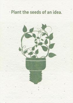 LL Seed Card 1.jpeg