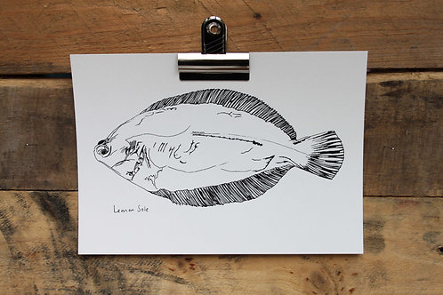 A5 Lemon Sole Screen Print