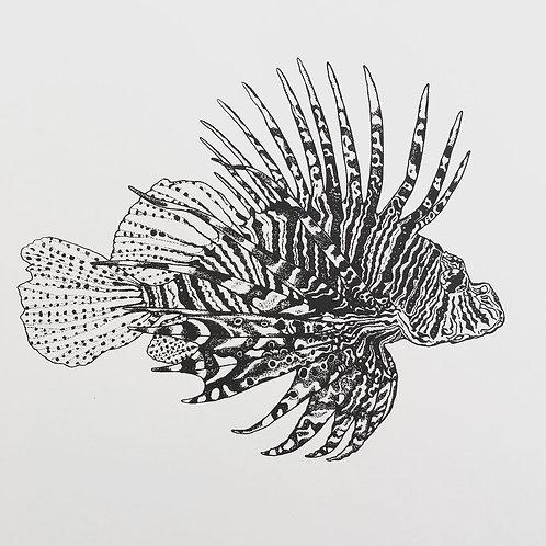 A3 Lionfish Print